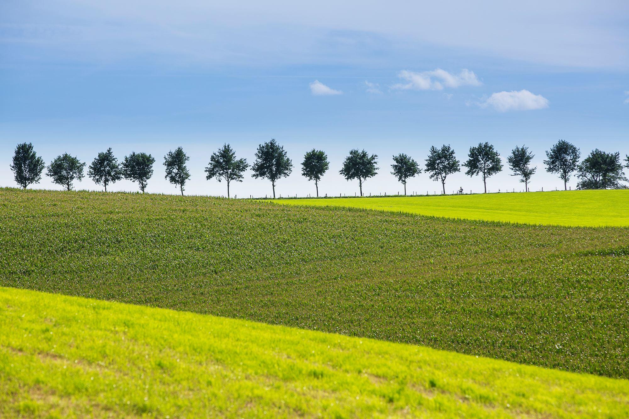 Natuur landschap - Afbeelding in ...