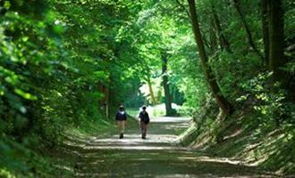 Ontdek Sittard-Geleen al wandelend en fietsend